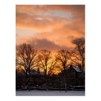 Cartão Postal Nascer do sol do inverno