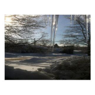 Cartão Postal Natal canadense da cena da neve