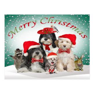 Cartão Postal Natal de Terrier tibetano com amigos