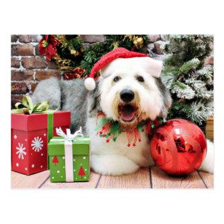 Cartão Postal Natal - Sheepdog inglês velho - Alphy