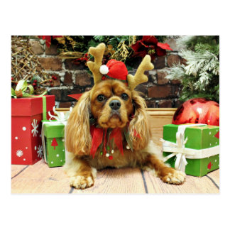 Cartão Postal Natal - Spaniel de rei Charles descuidado - Meyers