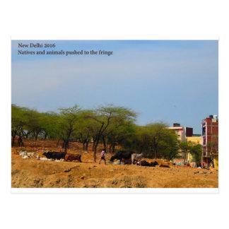 Cartão Postal Nativos dos animais do desenvolvimento do metro de