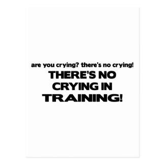Cartão Postal Nenhum grito no treinamento