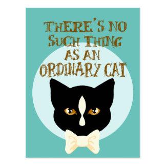 Cartão Postal Nenhuma coisa como um gato ordinário