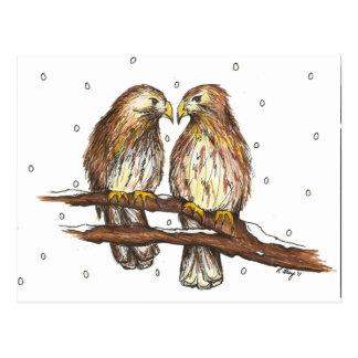 Cartão Postal Neve atada do inverno do pássaro do falcão de Lola