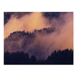 Cartão Postal Névoa do inverno no vale no por do sol de Morton