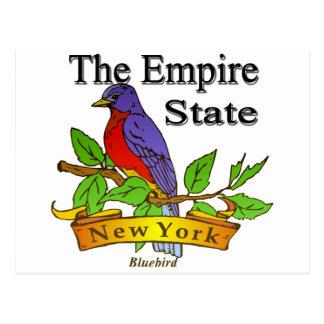 Cartão Postal New York o pássaro de estado do império