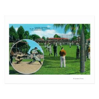 Cartão Postal New York Yankees na cena do treinamento