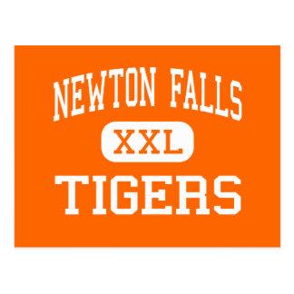 Cartão Postal Newton cai - tigres - altamente - quedas Ohio de