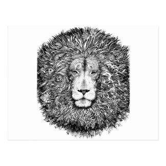 Cartão Postal Ninho do leão preto e branco