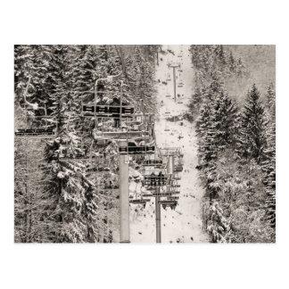 Cartão Postal No elevador de cadeira acima dos pinheiros