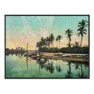 Cartão Postal No rio Photochrom raro de Miami