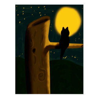 Cartão Postal Noite do gato