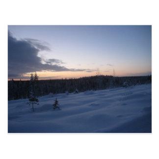 Cartão Postal Noite polar