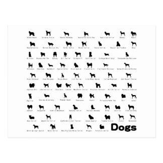 Cartão Postal Nome dos cães