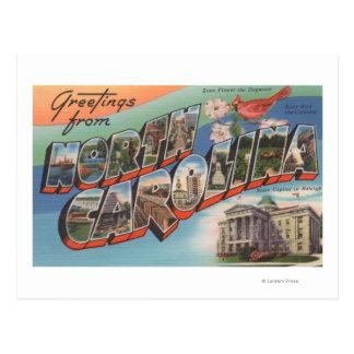 Cartão Postal North Carolina (flor de estado/pássaro)