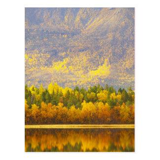 Cartão Postal Norueguês Lapland nas cores do outono