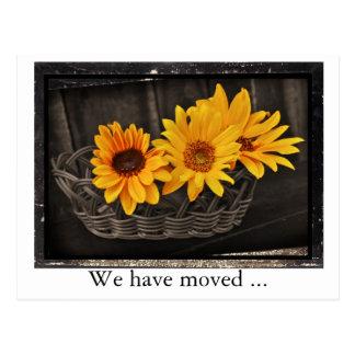 Cartão Postal Nós movemo-nos com endereço novo dos girassóis