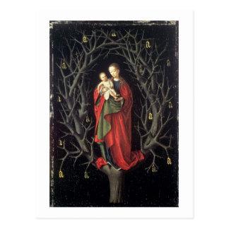 Cartão Postal Nossa senhora da árvore seca c.1450 (óleo no