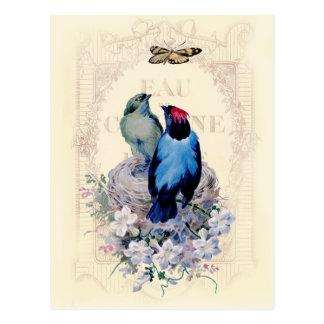 Cartão Postal Nosso primeiro Home