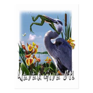 Cartão Postal Nunca dê acima!