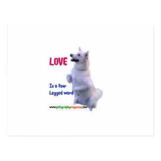 Cartão Postal O amor é uma palavra de quatro patas
