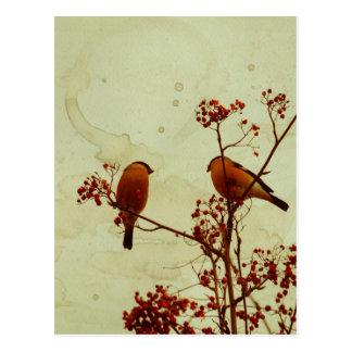 Cartão Postal O Bullfinch em Rowan Textured 2