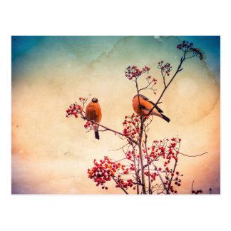 Cartão Postal O Bullfinch em Rowan Textured 3