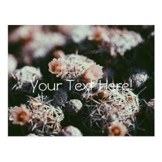 Cartão Postal O cacto de florescência de florescência planta o