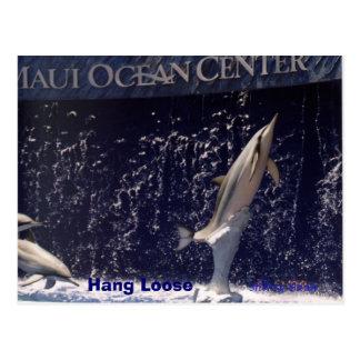 Cartão Postal O cair do oceano de Mauii afrouxa