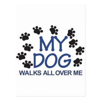 Cartão Postal O cão anda as patas