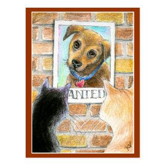 """Cartão Postal O cão de filhote de cachorro, gatos, """"quis"""" o"""