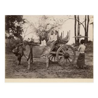 Cartão Postal O carro puxou por dois bois em Mandalay, Burma