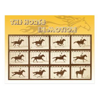 Cartão Postal O cavalo no movimento