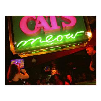 Cartão Postal O clube nocturno do Meow do gato em Nova Orleães