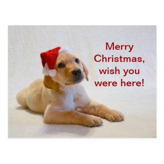 """Cartão Postal O """"cobre"""" diz o Feliz Natal!"""