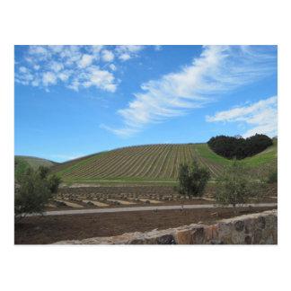 Cartão Postal O coração da região vinícola de Paso Robles