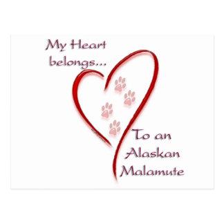 Cartão Postal O coração do Malamute do Alasca pertence