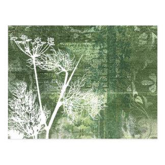 Cartão Postal O dente-de-leão verde e branco bonito semeia o