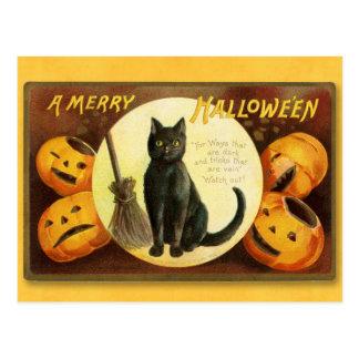 Cartão Postal O Dia das Bruxas feliz: Gato preto & Broomstick