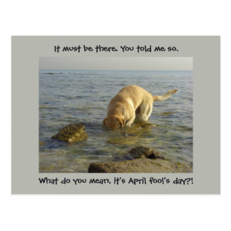 Cartão Postal O dia do enganado - Labrador pateta