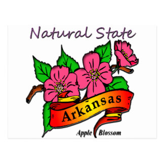 Cartão Postal O estado natural Apple de Arkansas floresce