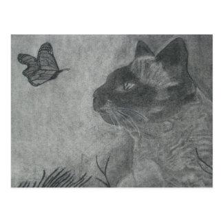 Cartão Postal O gato & a borboleta