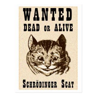 Cartão Postal O gato de Shrodinger quis o poster
