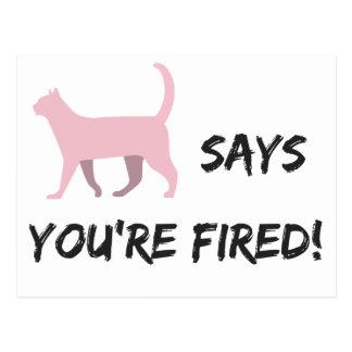 Cartão Postal O gato do bichano diz que você está ateado fogo!