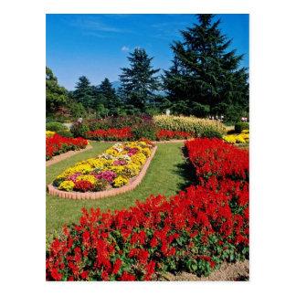 Cartão Postal O jardim botânico vermelho de Kyoto, Kyoto, Japão