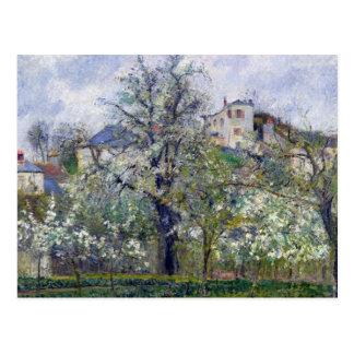 Cartão Postal O jardim vegetal com as árvores na flor