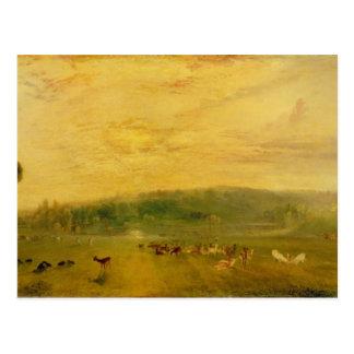 Cartão Postal O lago, Petworth: Por do sol, fanfarrões de