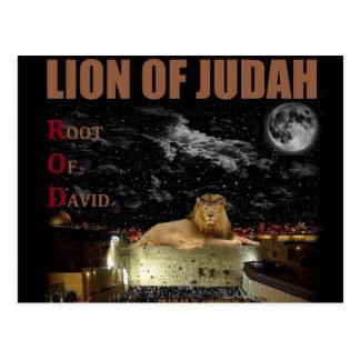 Cartão Postal O leão de Judah na parede ocidental