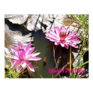 Cartão Postal O Lillies cor-de-rosa de Havaí